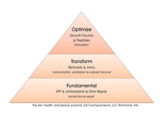 skin, health, and beauty pyramid